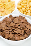Chocolate cornflakes, breakfast cereals, closeup Royalty Free Stock Photos