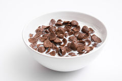 Chocolate Cornflakes Cereal Bowl. Breakfast Chocolate Cornflakes Cereal Bowl Close Up Stock Photo