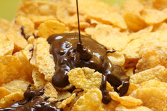 Chocolate Cornflakes I. A close up picture of some cornflakes with chocolate Royalty Free Stock Images