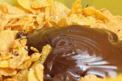 Chocolate Cornflakes II. A close up picture of some cornflakes with chocolate Stock Image