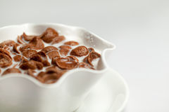 Chocolate cornflakes and milk Royalty Free Stock Image