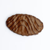 Chocolate covered biscuit Royalty Free Stock Photo