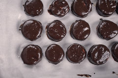 Chocolate covered christmas cookies Stock Images