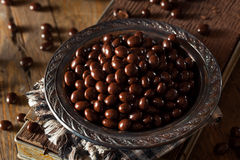 Chocolate Covered Espresso Coffee Beans. Ready to Eat royalty free stock images