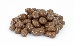 Chocolate covered raisins. An group of chocolate covered raisins on a white background royalty free stock photos