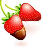 Chocolate covered strawberries Stock Photography