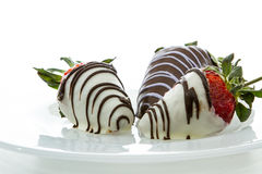 Chocolate covered strawberries. Close up with white and dark chocolate on a white background royalty free stock image