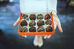 Free Chocolate Covered Strawberries Royalty Free Stock Image - 60857926