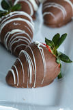 Chocolate covered strawberries. Delicious chocolate covered strawberries made at home with a milk chocolate swirl for a garnish stock photos