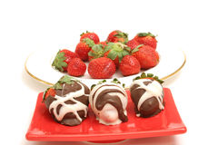 Chocolate Covered Strawberrys Stock Photography