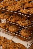 Chocolate cozido fresco Chip Cookie Rack da farinha de aveia das camadas das fileiras imagens de stock royalty free