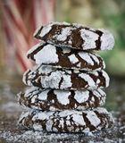 Chocolate crackle cookies Stock Images