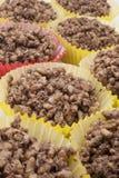 Chocolate Crackles Royalty Free Stock Photos