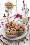 Chocolate and cranberries cakes royalty free stock image