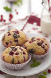 Chocolate and cranberries muffins stock photography