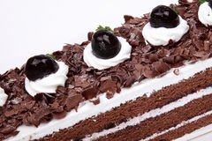 Chocolate cream cake Stock Images