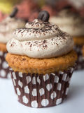 Chocolate and cream cupcake Royalty Free Stock Images
