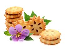 Biscuits. Chocolate Cream Filled Biscuits. Candy, background stock photos