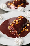 Chocolate crepes Stock Image