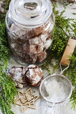 Chocolate crincle cookies. In jar with sugar powder and cristmas tree branch Stock Image