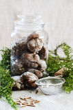 Chocolate crincle cookies. In jar with sugar powder and cristmas tree branch Royalty Free Stock Photo