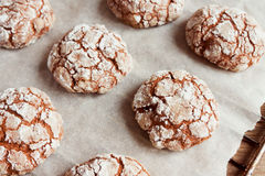 Chocolate crinkle cookies Royalty Free Stock Images