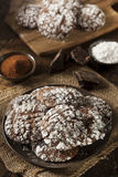 Chocolate Crinkle Cookies with Powdered Sugar Royalty Free Stock Photography