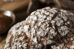 Chocolate Crinkle Cookies with Powdered Sugar Stock Photography