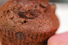 Chocolate Cup Cake Stock Photography