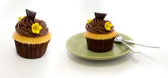 Chocolate cup cake. In green dish on white background Stock Images