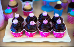 Chocolate cup cake  table inside tray Stock Photos