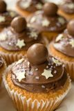 Chocolate Cup Cakes Stock Photo