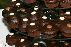 Chocolate cup cakes. Chocolate brown sweet  cup cakes Royalty Free Stock Images