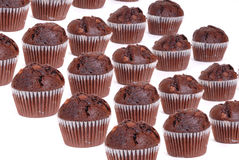 Chocolate cup cakes isolated group Royalty Free Stock Photos