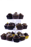 Chocolate Cup Cakes on a Stand Stock Photography