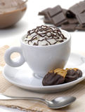 Chocolate cup and cookies chocolate. Royalty Free Stock Photo