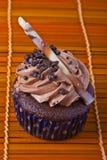 Chocolate cupcake Stock Images