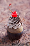Chocolate cupcake. With cherrie, selective focus Stock Photos