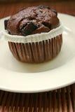 Chocolate cupcake Stock Photography