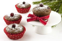 Chocolate cupcake with berry royalty free stock photography