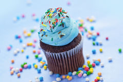Chocolate cupcake with blue cream on the top Stock Photos