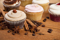 Chocolate cupcake, coffee beans, cinnamon, star anise on sacking Stock Photography