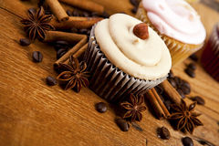 Chocolate cupcake, coffee beans, cinnamon, star anise on sacking Royalty Free Stock Image