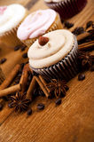Chocolate cupcake, coffee beans, cinnamon, star anise on sacking Royalty Free Stock Photos