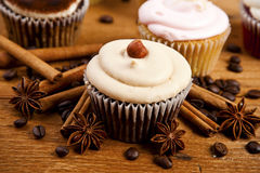Chocolate cupcake, coffee beans, cinnamon, star anise on sacking Stock Photography