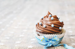 Chocolate cupcake with colorful sprinkles Royalty Free Stock Photo