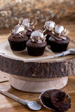 Chocolate cupcake with marshmallow Stock Image