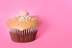 Chocolate cupcake on pink background Stock Photography