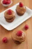 Chocolate Cupcake with raspberries. Home made Chocolate Cupcake with raspberries Stock Photography
