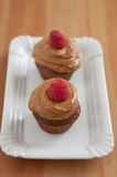 Chocolate Cupcake with raspberries Royalty Free Stock Photo